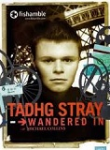 Tadhg Stray Wandered In
