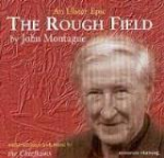 The Rough Field