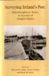 Surveying Ireland's Past