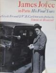 James Joyce in Paris : His Final Years
